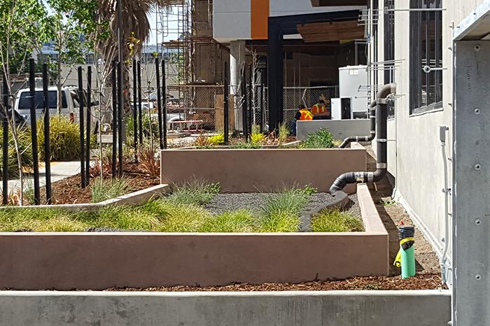 a1_sizing_Residential_1751 Carroll Avenue Senior Housing_garden drainage