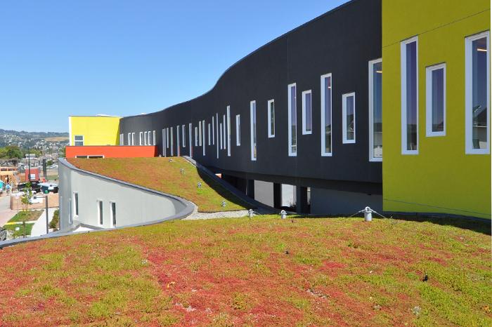 a1_sizing_Residential_tassafaronga_Grass Roof Longview
