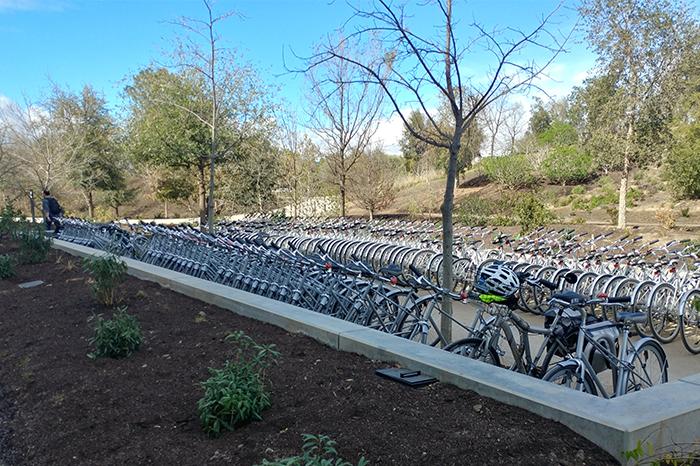 Workplace-Apple Bike Parking